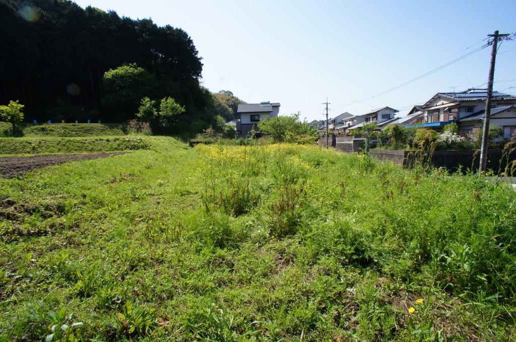 葉山.jpg